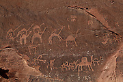 Petroglyphs depicting hunting scenes on a cliff face at Wadi Rum, Jordan. Here we see men with camels hunting. Thamudic, Nabataean and Arabic inscriptions testify to widespread literacy in these peoples. In Wadi Rum there are 25,000 rock carvings and 20,000 inscriptions produced over 12,000 years of habitation, from Neolithic to Nabataean. Picture by Manuel Cohen