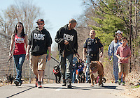 The Hulk strolls the WOW Trail with about 100 dogs following behind during the annual Bow WOW Fest on Saturday morning.  (Karen Bobotas/for the Laconia Daily Sun)