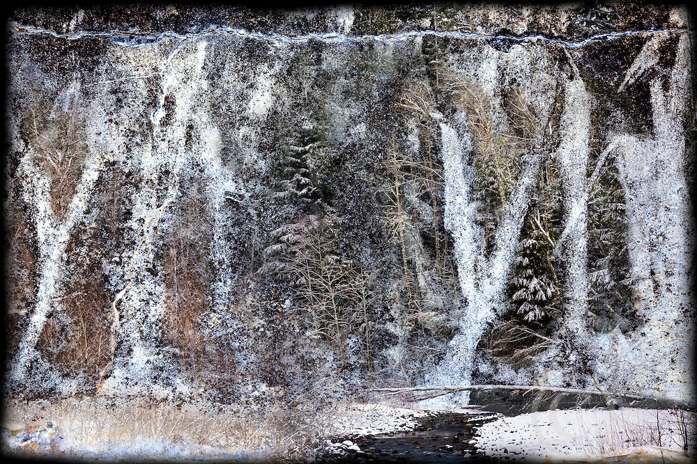 Forest Wall Composite image