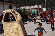 Un grupo de personas corren tras la vaca hecha de petate acompañados de banderas y música tradicional de tambor y flauta de carrizo durante el carnaval de Tenejapa, Chiapas.
