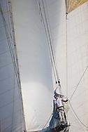© Sander van der Borch. St. Tropez, 30 September 2008. Voiles de Stropez.