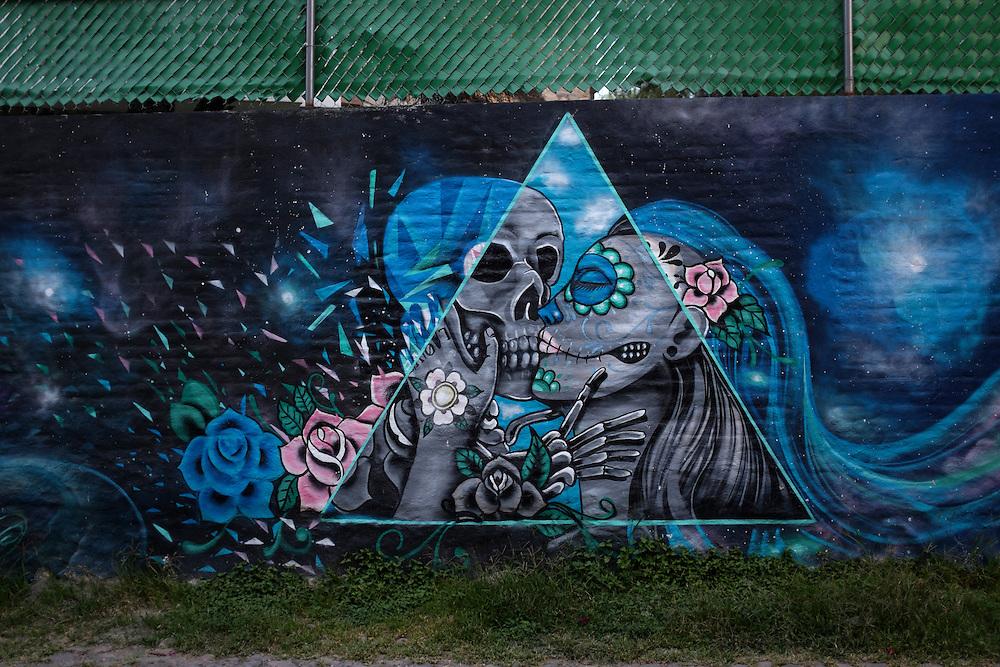 Street Art. San Miguel de Allende, Mexico.