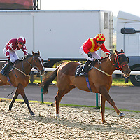Six Of Clubs and Graham Lee winning the 1.10 race
