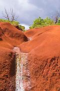 Creek and red earth in Waimea Canyon State Park, Island of Kauai, Hawaii