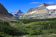 Mount Reynolds can be seen from beautiful Preston Park in Glacier National Park, Montana