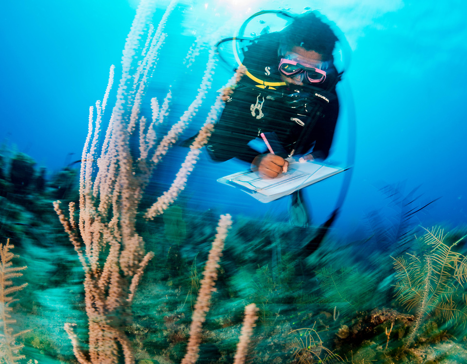 Marine biologist Agnessa Lundy with The Bahamas National Trust assesses a coral reef in the Exuma Cays land and Sea Park. As coral reef health continues to decline worldwide scientists are trying to find the best ways to help reefs which includes areas like this park where no extraction is legal.