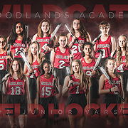 Team Poster - Field Hockey (JV)