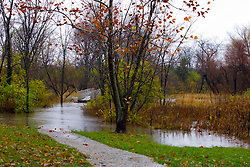 30 October 2009:  Water flows across the a hiking trail inside Moraine View State Park near Leroy Illinois as the rain continues to fall.