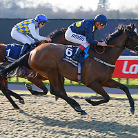 Mukaabra - Andrea Atzeni wins from Merhoob - Ryan Powell<br /> The Download The Ladbrokes App Maiden Stakes Cl5<br /> Lingfield Park 24/2/16.<br /> ©Cranhamphoto.com