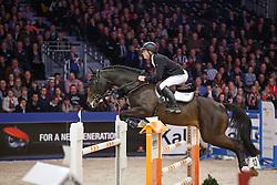 Greve Willem (NED) - Brainpower<br /> KWPN Stallion Selection - 's Hertogenbosch 2014<br /> © Dirk Caremans