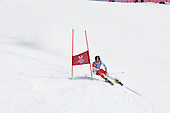 Gian Slalom (UNIVERSIADE 0'15)