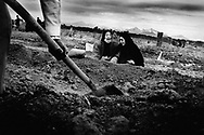BAM, Iran - Two young women buried their seven family members after the earthquake. The two were not home when the quake struck.