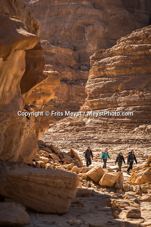 Sinai, Egypt, December 2018. Naqb El Hamadat, while hiking with the Tarabin Tribe through the Sinai Desert Coastal Ranges. The Sinai Trail is Egypt's 1st long distance hiking trail, running 230km from the Gulf of Aqaba to the top of the Sinai's highest mountain. It connects old trade, travel and pilgrimage routes through one of the Middle East's most iconic desert wildernesses and is managed by a cooperative of three Bedouin tribes. Photo by Frits Meyst / MeystPhoto.com
