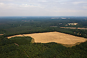 Nederland, Utrecht, Gemeente Utrechtse Heuvelrug, 08-07-2010; Nationaal Park de Utrechtse Heuvelrug, Maarnsche Berg en Hoog Moersbergen tussen Doorn en Maarn..National Park..luchtfoto (toeslag), aerial photo (additional fee required).foto/photo Siebe Swart