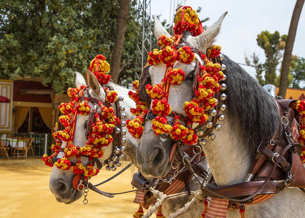 A scene at the Feria Del Caballo in Jerez Spain