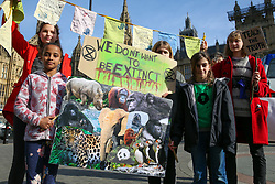 © Licensed to London News Pictures. 22/02/2019. London, UK. Young people, teachers and parents protest at outside Houses of Parliament to demand that the climate and ecological crisis is acknowledged as an educational priority and that students are taught the truth about the world they are inheriting. Photo credit: Dinendra Haria/LNP