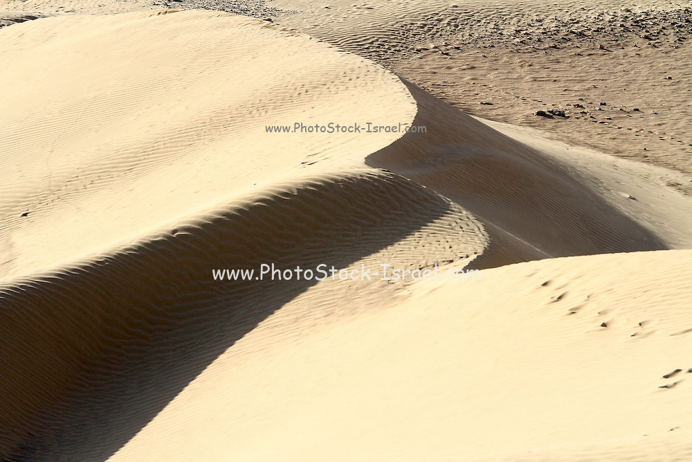 wind shaped Deset sand dune