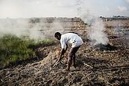 Zimbabwe, Mr. Kingston, farmer brænder mark af og venter på regnen.