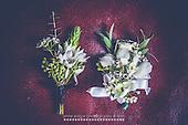 Belmont Flowers