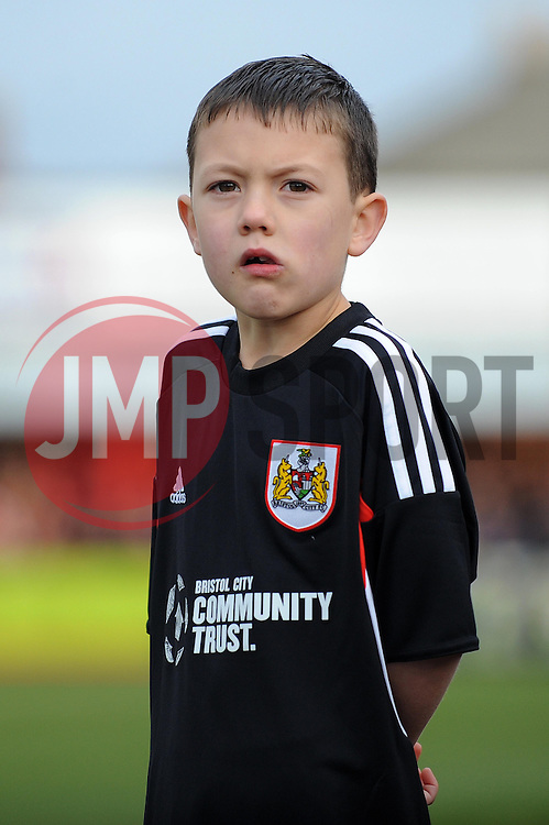 Mascot - Photo mandatory by-line: Dougie Allward/JMP - Tel: Mobile: 07966 386802 08/12/2013 - SPORT - Football - Tamworth - The Lamb Ground - Tamworth v Bristol City - FA Cup - Second Round