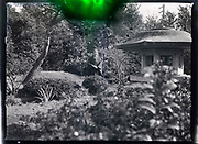woman standing Japanese garden with a traditional stone lantern