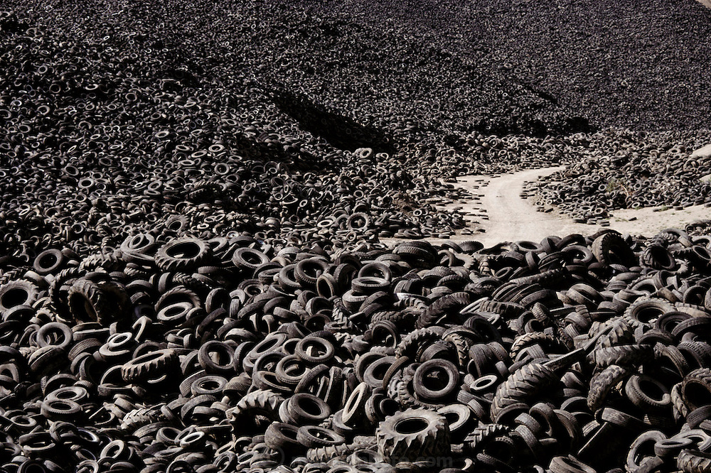 Mountain of used tires at a prototype tire- burning power station in Westley, California. The tires are used as fuel to run an electricity generator. It is estimated that one tire can serve the energy needs of the average northern California household for a day. The mountain contains around 40 million tires & the plant is expected to burn some 4 million tires annually. Several environmental protection systems reduce emissions from the plant; a smog-control system neutralizes nitrous oxides, a scrubber system removes sulphur & a giant vacuum cleaner removes fly ash. Both the sulphur & the zinc-containing fly ash are recycled. (1988).
