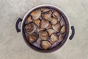 pot of raw clams