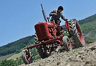 24/05/10 - FARNAY - LOIRE - FRANCE - Tracteur FARMALL de Xavier HORY - Photo Jerome CHABANNE