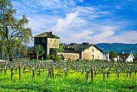 V. Sattui Winery, St. Helena, Napa Valley, California USA