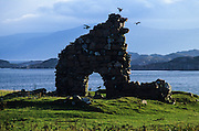 Hebrides, Iona island. Ruins of the the Abbey.
