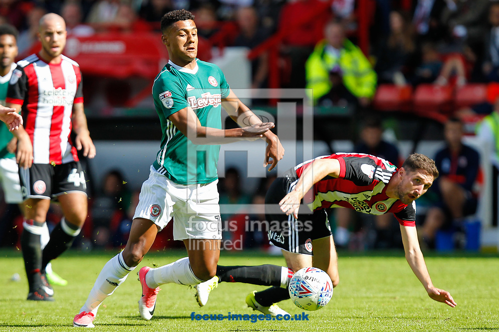 Ollie Watkins of Brentford and Chris Basham of Sheffield United during the Sky Bet Championship match between Sheffield United and Brentford at Bramall Lane, Sheffield<br /> Picture by Mark D Fuller/Focus Images Ltd +44 7774 216216<br /> 05/08/2017