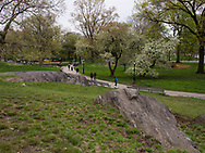 Rock formation and path between West 95th and 96th street in Central Park.