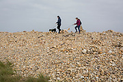 A couple of dog owners carefully pick their way over rocks and stones on Holy Island, on 27th September 2017, on Lindisfarne Island, Northumberland, England. The Holy Island of Lindisfarne, also known simply as Holy Island, is an island off the northeast coast of England. Holy Island has a recorded history from the 6th century AD; it was an important centre of Celtic and Anglo-saxon Christianity. After the Viking invasions and the Norman conquest of England, a priory was reestablished.