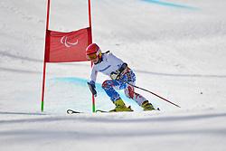 Mariia Papulova, Women's Giant Slalom at the 2014 Sochi Winter Paralympic Games, Russia