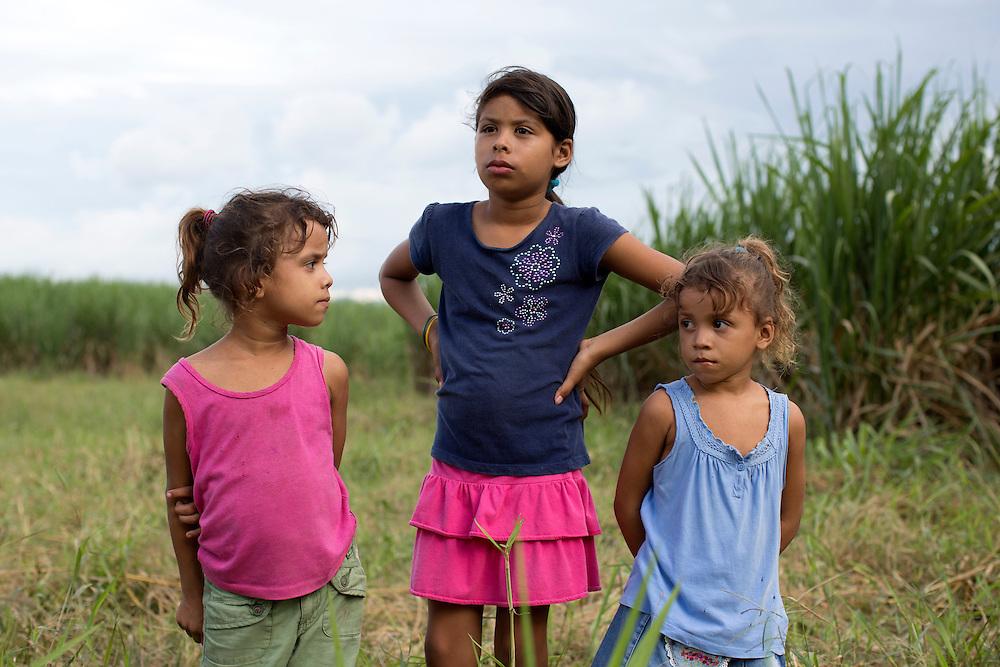 San Pedro Sula, Honduras<br /> <br /> Emilio f&ouml;dd 2 maj1997 hittas d&ouml;d p&aring; ett sockerr&ouml;r f&auml;lt i Villa Nueva utanf&ouml;r San Pedro Sula. Han har avr&auml;ttats med 15 skott i huvudet och sedan sl&auml;pats in bland sockerr&ouml;ren. Han var medlem i gruppen MS13 men misst&auml;nktes ha stulit tv&aring; kilo kokain fr&aring;n sina egna.<br /> Nyfikna tittar p&aring; medan polisen g&ouml;r sin plats unders&ouml;kning.<br /> <br /> Photo: Niclas Hammarstr&ouml;m