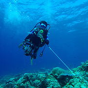 Diver using a reef hook at Maratua Island, Kalimantan, Indonesia.