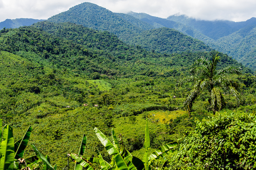Traditional homes & farms of Indigenous people Ngobe Bugle; north of Santa Fe, Santa Fe National Park, Cordillera Central, Panama