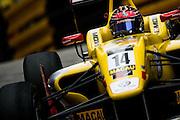 November 13-16, 2014 : 61st Macau Grand Prix, Tom BLOMQVIST