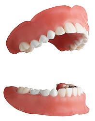 teeth 005 Teeth Dentures
