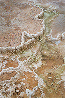 Desposits of travertine colored by thermophilic bacteria, Upper Terraces Mammoth Hot Springs, Yellowstone National Park