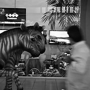 DESDE EL AUTOEXILIO<br /> Photography by Aaron Sosa<br /> Panama City - Panama 2011 DESDE EL AUTOEXILIO<br /> Photography by Aaron Sosa<br /> Panama City - Panama 2011
