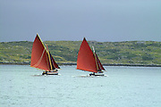Two Galway Hookers competing in Roundstone Regatta, traditional Irish sailing boats in Connemara, Ireland, July 2004....