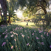 Photography for Spiritual Retreats and Workshops