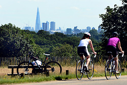 © Licensed to London News Pictures. 22/07/2012. Richmond, UK London's tallest building the shard can be seen in the distance. People enjoy the warm weather in Richmond Park  today, Sunday 22nd July 2012. Temperatures in London are expected to top 30 degrees celsius this coming week. Photo credit : Stephen Simpson/LNP