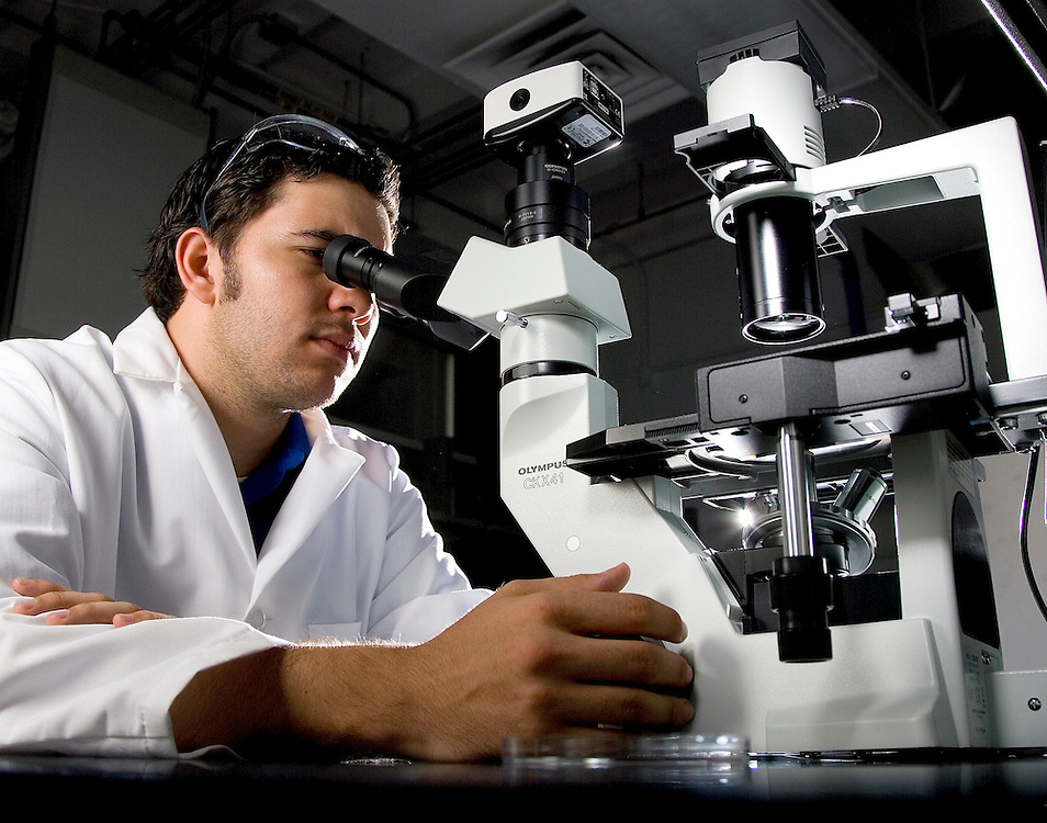 7/29/08: Senior Biomedical Engineering Student, Robert Hood works on the Skin Simulant Project at the Cullen College of Engineering, University of Houston, Houston, TX.