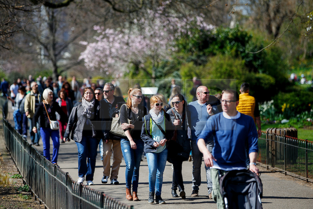 © Licensed to London News Pictures. 07/04/2015. LONDON, UK. People walk past cherry blossom trees in St James's Park in London on Tuesday, 7 April 2015 as temperature hits 17C. Photo credit : Tolga Akmen/LNP