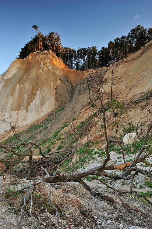 Landslide Store Taler at Møns Klint, Denmark
