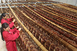August 29, 2017 - Ji'An, Ji'an, China - Ji'an, CHINA-29th August 2017: (EDITORIAL USE ONLY. CHINA OUT) ..People are busy processing pressed salted duck in Suichuan County, Ji'an, east China's Jiangxi Province, August 29th, 2017. Suichuan County can produce eight million pressed salted ducks every year, which are exported to other countries. (Credit Image: © SIPA Asia via ZUMA Wire)