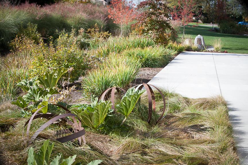 Oct 2016 Bellevue Botanical Garden
