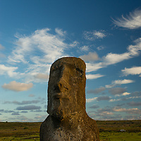 Moai are human looking carved stone sculptures created by the Rapa Nui people on Easter Island.  The average height of each moai is 13 feet 1 inch and an average weight of 13.8 tons.